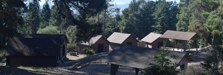 Dogpatch Cabins and Picnic area